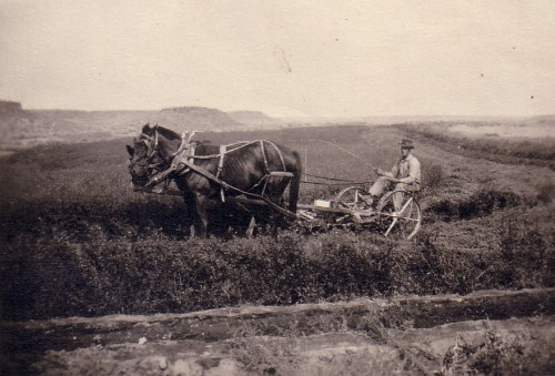 Oscar Danielson on his Crab Creek farm in Grant County, WA, circa 1920