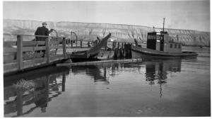 Doris provided cross-river transportation at Hanford in 1935.