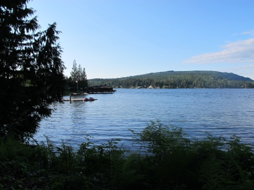 The wreck of the Cora Blake lies beneath the shallow waters of this Lake Whatcom bay.