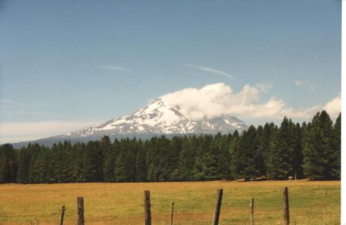 The view of Mount Adams from my property, two gates south of the home of Chief Justice W. O. Douglas.